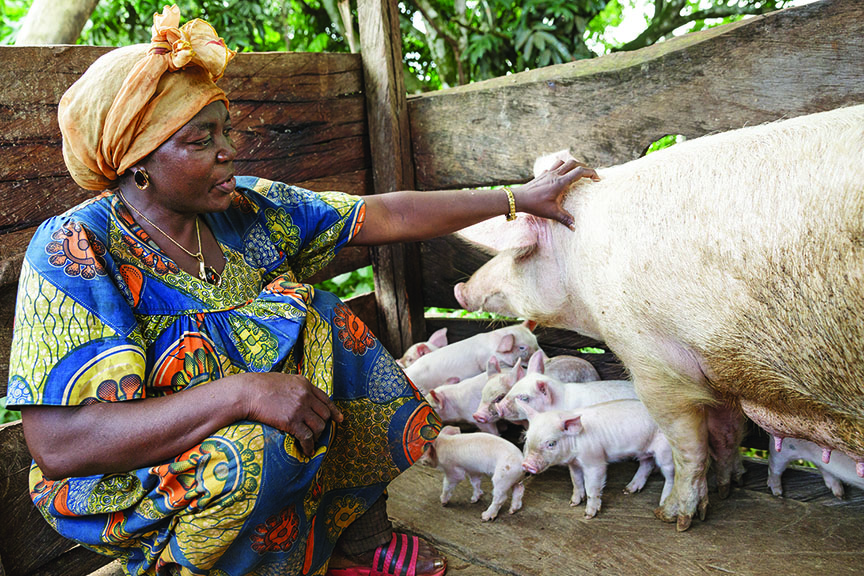 Micheline Matang checks on her pigs in their pen.