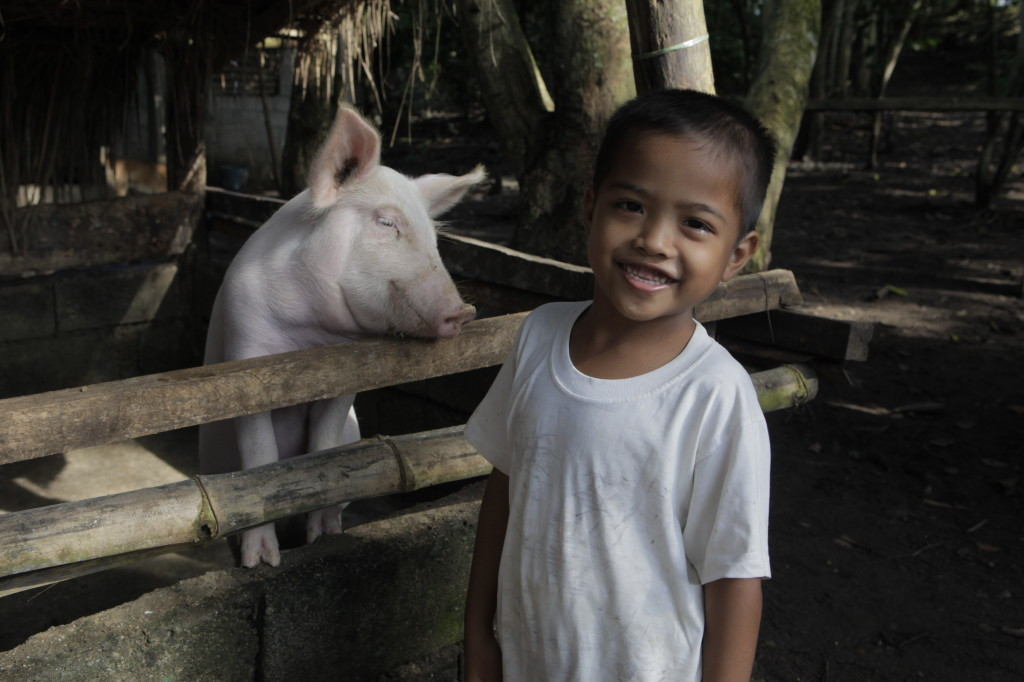 Rocky Carag, 6, with one of the family pigs. Photo by Russell Powell.