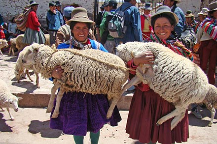 Women Receive Sheep In Mexico